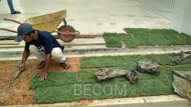 Pakej Rumput grass landskap hiasan taman
