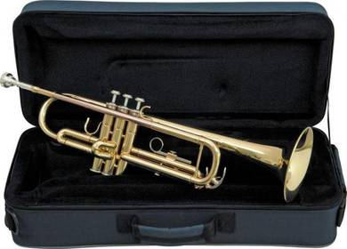Antigua trumpet With Case