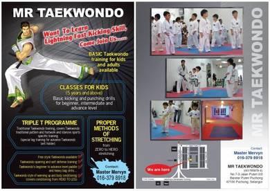 Taekwondo training centre bandar puteri puchong
