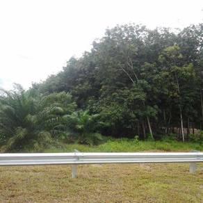 Tanah utk dijual (forest city area)