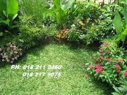 Leman- Kawasan Tanam Rumput/Potong Pokok
