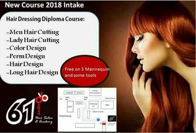 Hair Styling diploma course