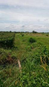 More than 1 acre corner agricutral land johan setia for sales