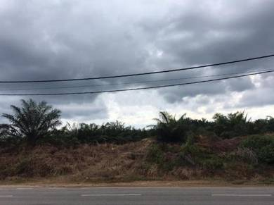 Main Road Frontage Agriculture Land 4km From Yong Peng To Labis Road