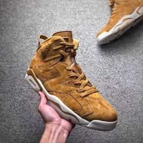 Nike Air Jordan 6