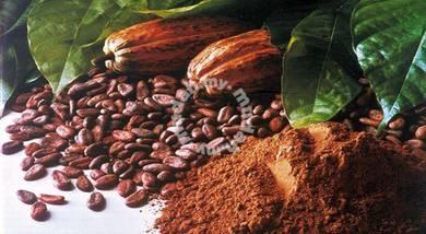 Sebuk koko x gula sakit kencing manis Cocoa powder