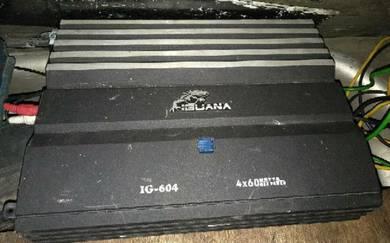 2 Chanel Iguana power amp
