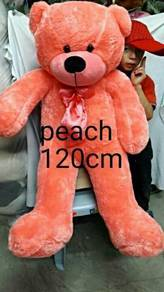 Teddy bear new color