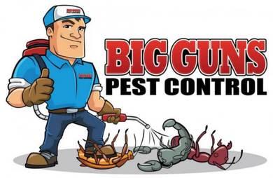 Pest control ANAI ANAI