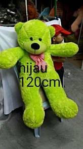 Teddy bear new green