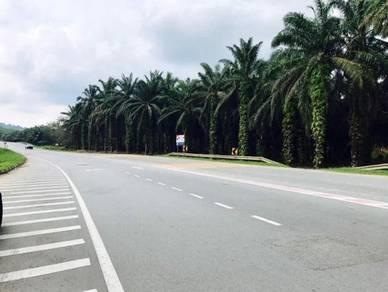 19.7 Acres Development Land at Kota Tinggi