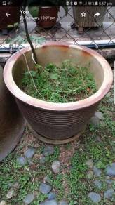 Garden Pot for sale