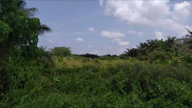 Superb 20acre Freehold Industrial Land in Telok Panglima. Good Buy!!