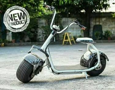 Harley Davidson Electric