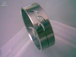 ABRSS-D012 Silver Drill Stainless Ring- Dragon Fly