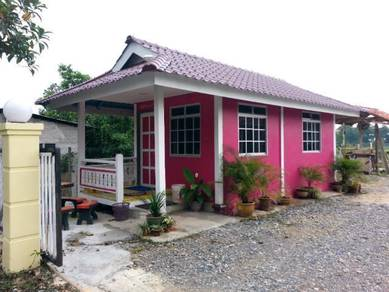 Ct chalet & homestay