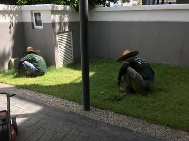 Penang Landscape And Garden Maintenance