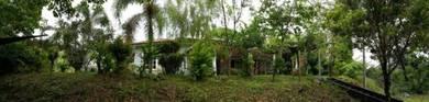 Tanah Dusun di Padang Temak, Pdg Terap, Kedah
