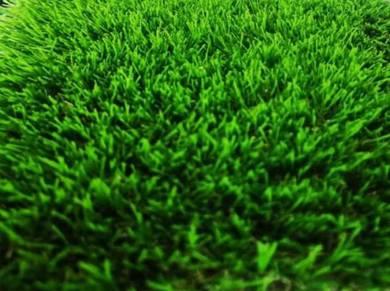 Artificial grass untuk balkoni dan laman rumah