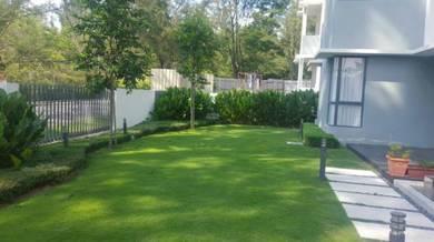 Landscape ( carpet and artificial grass)