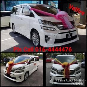 Velfire For Wedding Car Rental