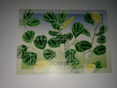 Setem Malaysia Tumbuhan Herba 2004