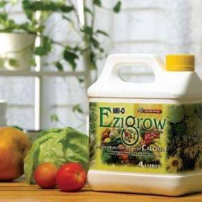 Baja Ezigrow (4L)
