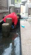 Fish pond cleaning
