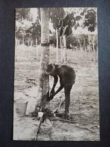Postcard Tapping Rubber 1933 No 2751