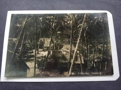 Postcard Malay Kampong 1931 No 2749