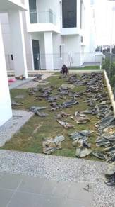 Lanskap halaman dan tanam rumput