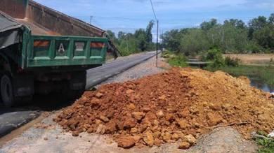 Tanah kuning topsoil for gardening planting timbus
