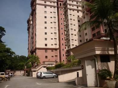 Tiara Faber Condo Taman Desa Kuala Lumpur For Sale Fully Furnished