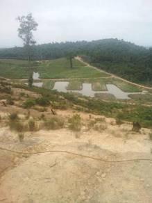 100 acres/mix orchard/Lanchang/Pahang