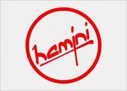 HAMINI Q  SYSTEM avatar